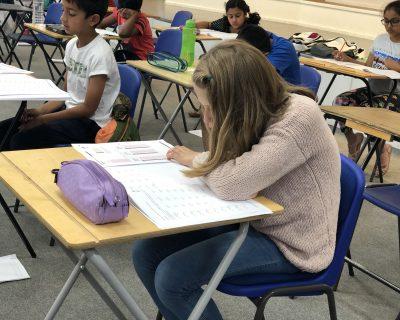 GCSE & Pre-GCSE Courses